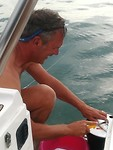 Makrelen worden grondig gefileerd