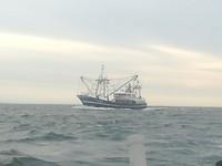 Vissersboot van Texel