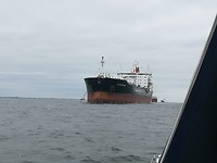 Op zee bij Rotterdam