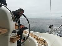 Makrelen gevangen