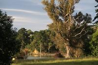 Uitzicht vanuit Orton Bradley park