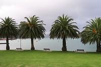 Picton de baai