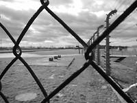 Birkenau vanachter een gesloten hek.