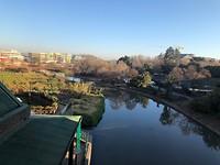 Uitzicht uit hotelkamer