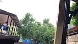 rainyy day