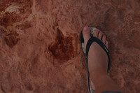 Moenkopi Dinosaur Tracks