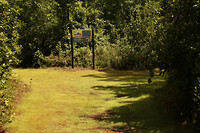 Hier is het nog een behoorlijk bospad...