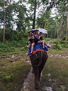 olifant rijden