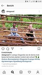 Screenshot_20181015-134952_Instagram