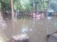 Een hele wijk onder water