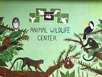 198 Costa Rica Animal Rescue Center