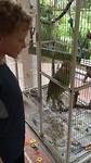 205 Joep zingt met papegaai Happy