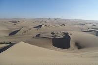 340 heel veel zandduinen