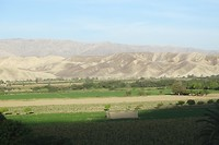 344 onderweg vanuit Huacachina is het alleen groen rondom de riviertjes