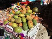 379 cactusvruchten