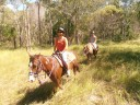 Horse riding in the bush
