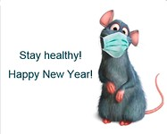 Het jaar van de RAT!!!!!