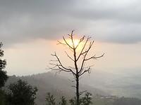 de laatste zonnen stralen