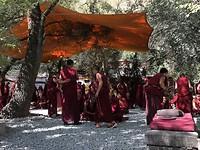 monniken in debat