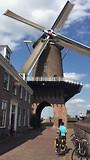 molen bij Wijk bij Duurstede