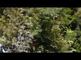 Dag-19 Abel Tasman National Park