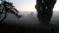 Het wordt licht....mist