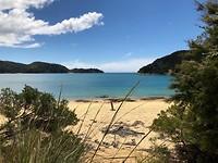Uitzicht op strand Abel Tasman Park