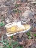 gouden schoentje