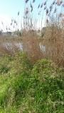 Langs het Canal du Haut Seine