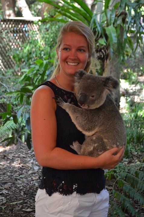 Cuddling with a Koala - I'm in love