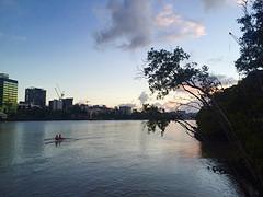 Roeien op de Brisbane River