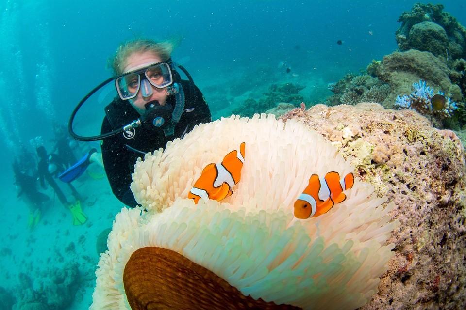 OMG Nemo bestaat echt!!