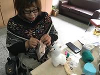 Lama (heel populair is NL en China) in de maak