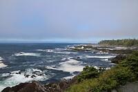 Wid Pacific Trail