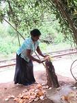 Lekkere kokosnoot