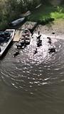 en na afloop lekker spelen in de rivier