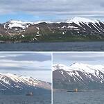 Groenland zee, retour Grimsey