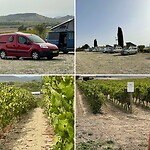 Mijn uitzicht over de wijnvelden