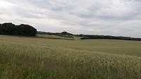 Landschap in Denemarken
