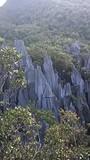 Pinnacles 7