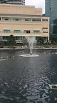 Fonteinen in KLCC park