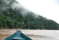 op weg naar jungle