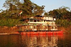 Reina de Enin, Amazone cruiser