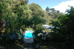 zwemplek in het groen