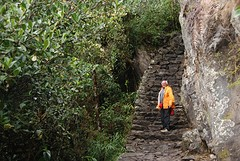 Start van de klim omhoog Machu Picchu
