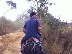 Maarten te paard