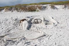 Zandsculptuur Tortuga Beach