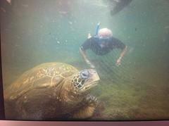 Maarten en schildpad