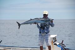 tonijn aan de haak