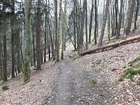 20170227 Prachtige paden richting Einruhr